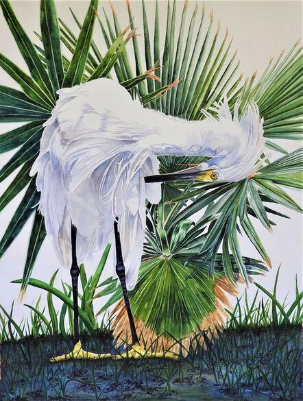 Carol Dawson, 'Preening: Snowy Egret', 2020