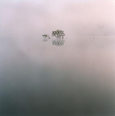 André Vieira, 'Iriri River,  Brazilian Amazon', 2008