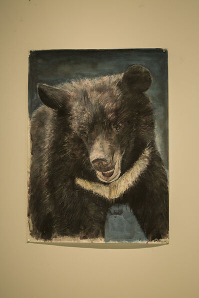 Russ Ronat, 'Formosan Black Bear', 2018