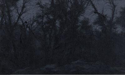 Pan Jian 潘剑, 'Across the Rain Forest - 1', 2014