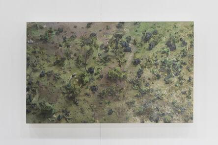 Amy Bennett, 'Forest Floor', 2010