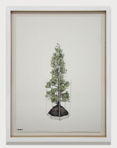 Edwin Monsalve, 'Prototipos para una naturaleza rehabilitada (4.1)', 2014