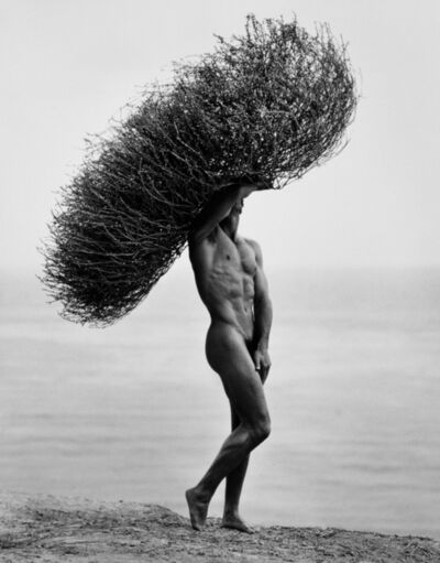 Herb Ritts, 'Male Nude With Tumbleweed, Paradise Cove', 1986