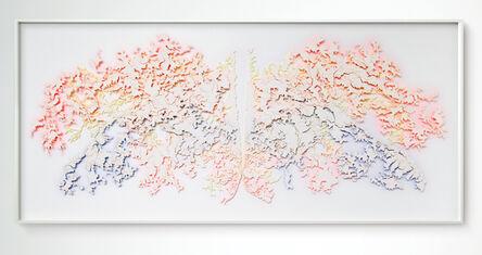 "David Adey, '""Hide"" (layered) 2', 2017"