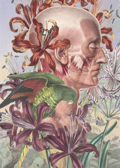 Juan Gatti, 'Untitled'