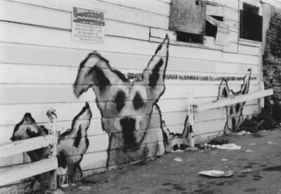 Arabella Colton, 'Wall Dogs — Private Property, Fresno Alley, San Francisco 1992', 1992