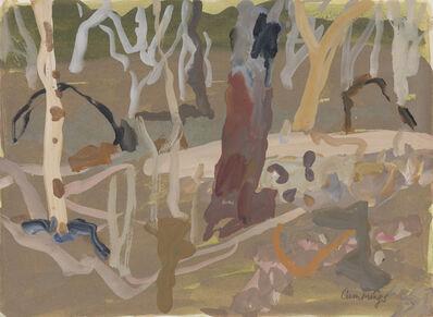Elisabeth Cummings, 'Late afternoon river bed N'Dhala Gorge', 2019