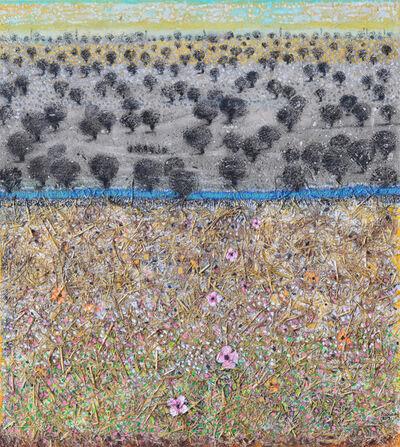 Nabil Anani, 'Olive Groves #1', 2019