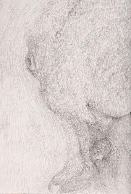 Jullissa Moncada, 'Untitled 1', 2013