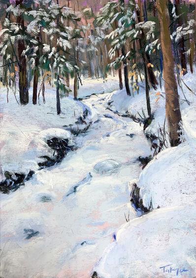 Takeyce Walter, 'Day 7: Snowy Cascade', February 2020