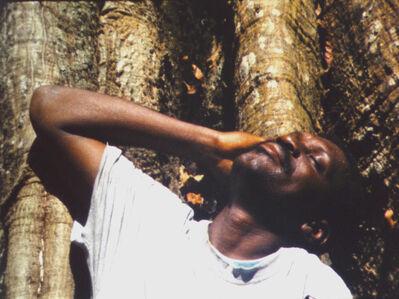 Musa paradisiaca, 'Cena de caça [Hunting scene]', 2013