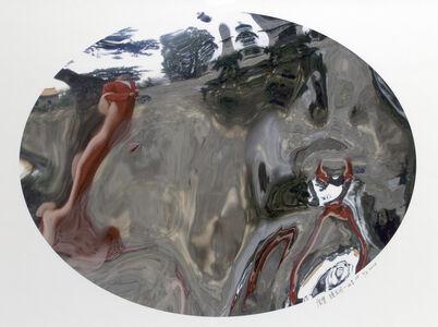 Zhan Wang 展望, 'Flowers in the Mirror, Beijing Series #2', 2004