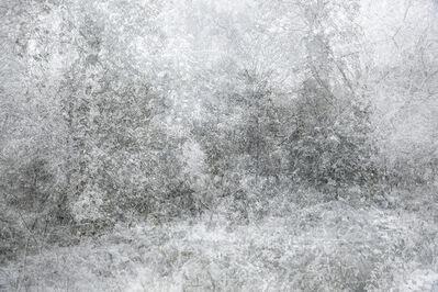 Kim Boske, 'Snow', 2015