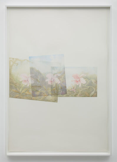 Marc Handelman, 'Close-up, No People, Scenics', 2014