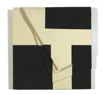 """Luciano Figueiredo, 'Relevo """"La Loire""""', 2015"""
