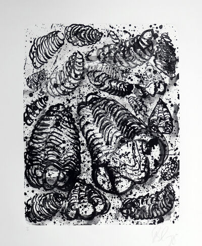 Tony Cragg, 'Untitled ', 1995