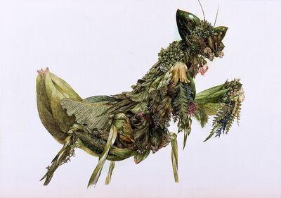 Ikeda Manabu, 'Grass Mantis', 2004