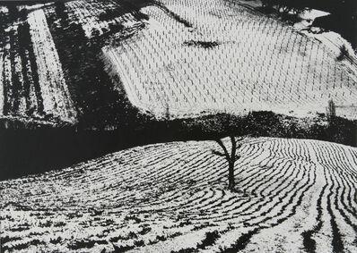 Mario Giacomelli, 'Paesaggio fotomeccanico', 1965