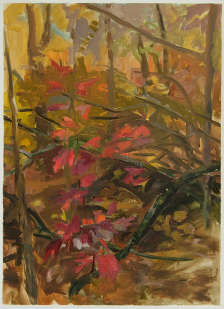 Kristin Musgnug, 'Study for Red Maple', 2012