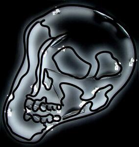 Anne-Katrine Senstad, 'Black Warhol Neon Skull SM', 2009