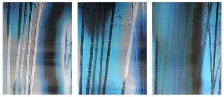 Han Lei, 'Bamboo No.1', 2015