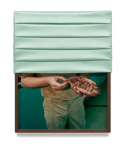 Elad Lassry, 'Untitled (Isopod)', 2013