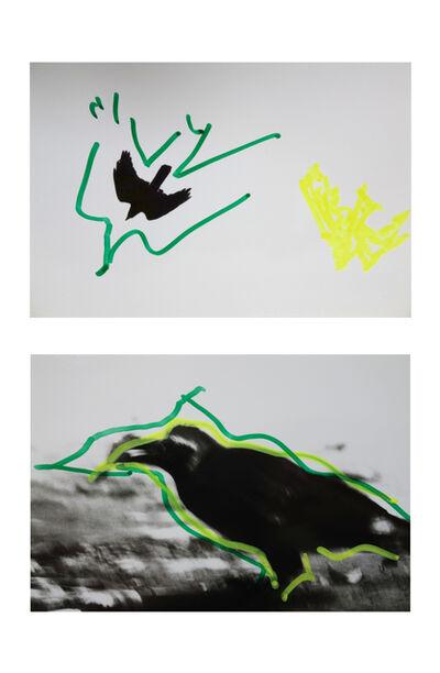 Masahisa Fukase, 'Ravens, '92', 1992