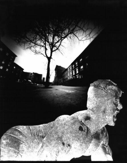 Bruce Eves, 'Work # 278: Stray Dog', 2003