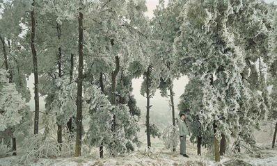 Chen Jiagang, 'The Cold Forest', 2008