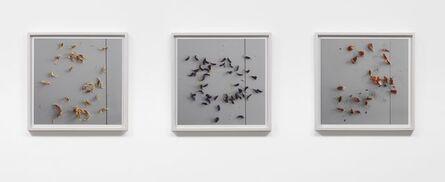 Spencer Finch, 'Vanitas (Tulips) ', 2012