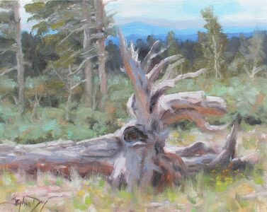 Stephen Day, 'Fallen Timbers', 2021