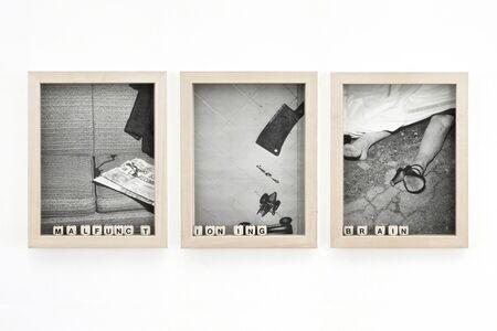 Bernhard Hosa, 'Malfunctioning Brain', 2010