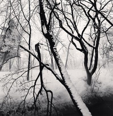 Michael Kenna, 'Kawayu Forest, Study 1, Hokkaido, Japan', 2014