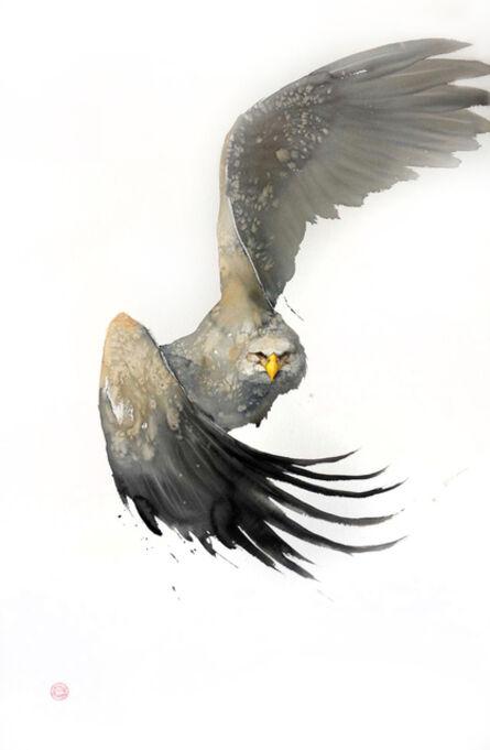 Karl Martens, 'White Tailed Eagle'