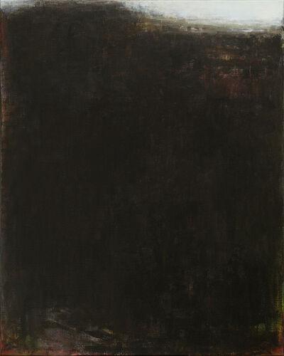 Yves Beaumont, 'Het Barre Land', 2014