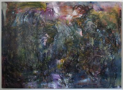 Matthias Schaufler, 'Delusory Parasitosis', 2016