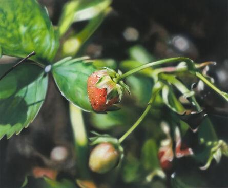Ben Schonzeit, 'One Strawberry', 2009