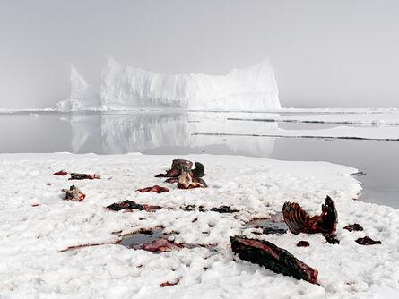 Henrik Saxgren, 'Slaughter Site', 2016