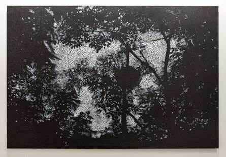 Daniel Boyd, 'Untitled (YCGTRC)', 2017