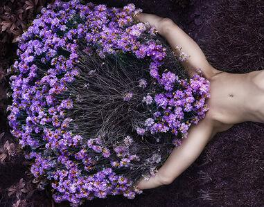 Natasha Shulte, 'Untitled 4', 2019