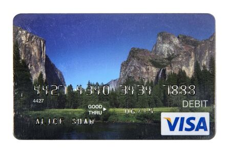Alice Shaw, 'Unemployment Debit Card For Out of Work Artist From The Ansel Adams School of Photography', 2014