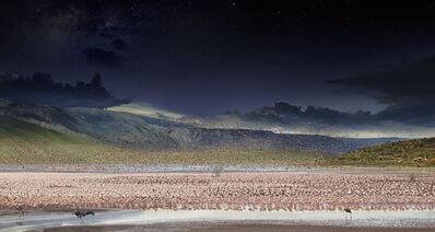 Stephen Wilkes, 'Day to Night, Flamingos, Lake Bogoria, Kenya', 2017