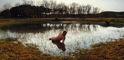 Ellen Kooi, 'Overveen - vogelmeer', 2013