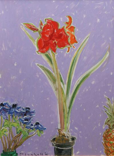 Joseph Plaskett, ' Anemones, Amaryllis (purple)', 2001