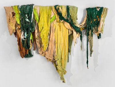 Roberto Gomez, 'Untitled, Drape Series', 2015
