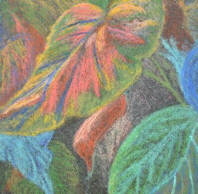 David Cerulli, 'Leaf Variation 3', 2015