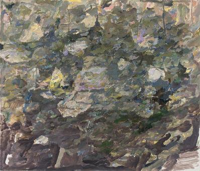 Max Kozloff, 'Storm', 2013