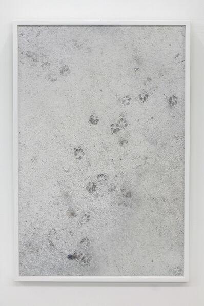 Aiden Morse, 'Erratic Dog Behaviour', 2016