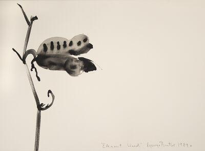 George Bartko, 'Elegant Weed', 1989