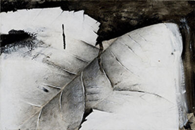 Jay DeFeo, 'Detail, Snake River Canyon', 1974